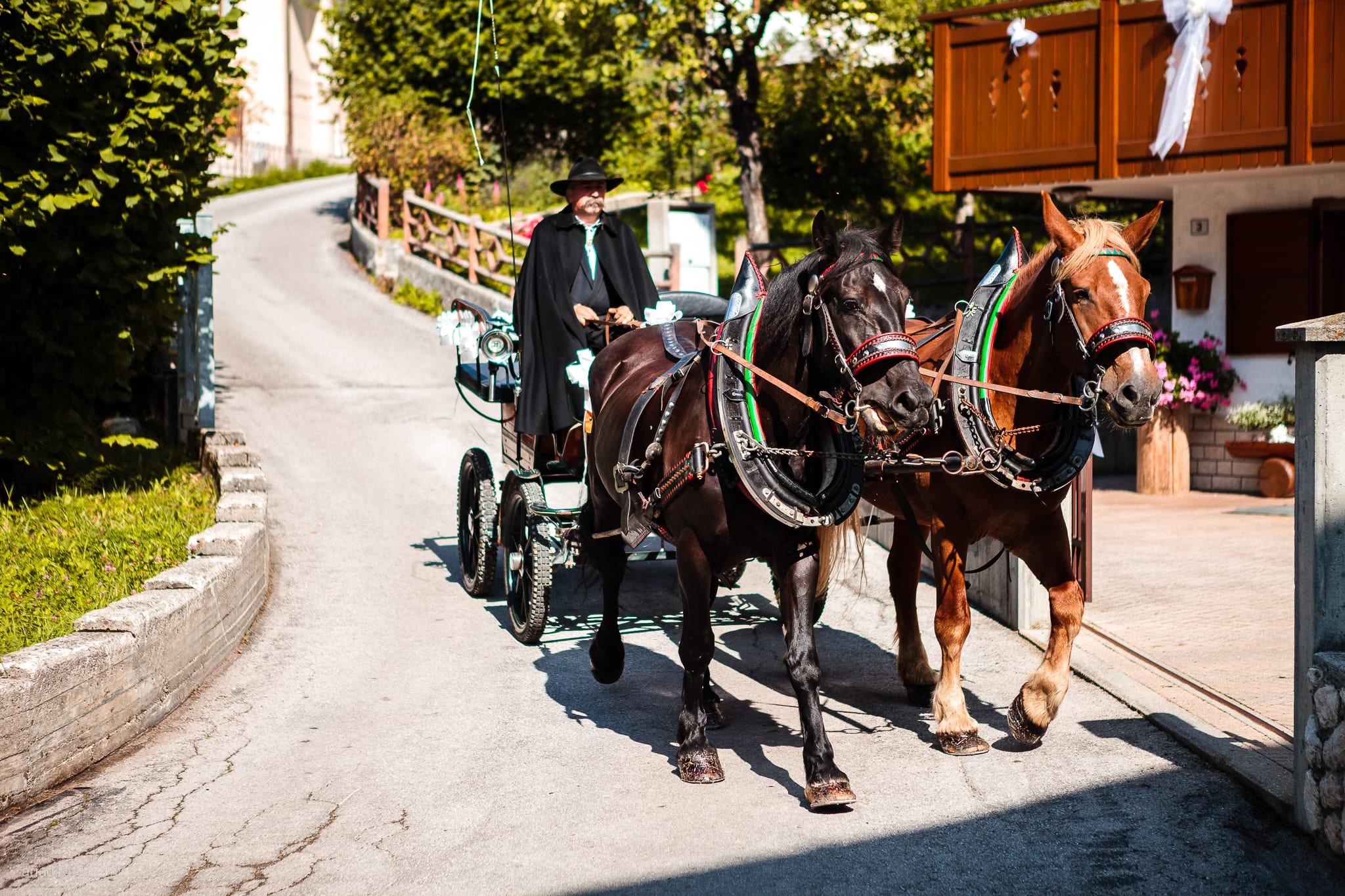 Elisa Gabriele matrimonio Veneto Val Zoldana Belluno preparativi carrozza cavalli