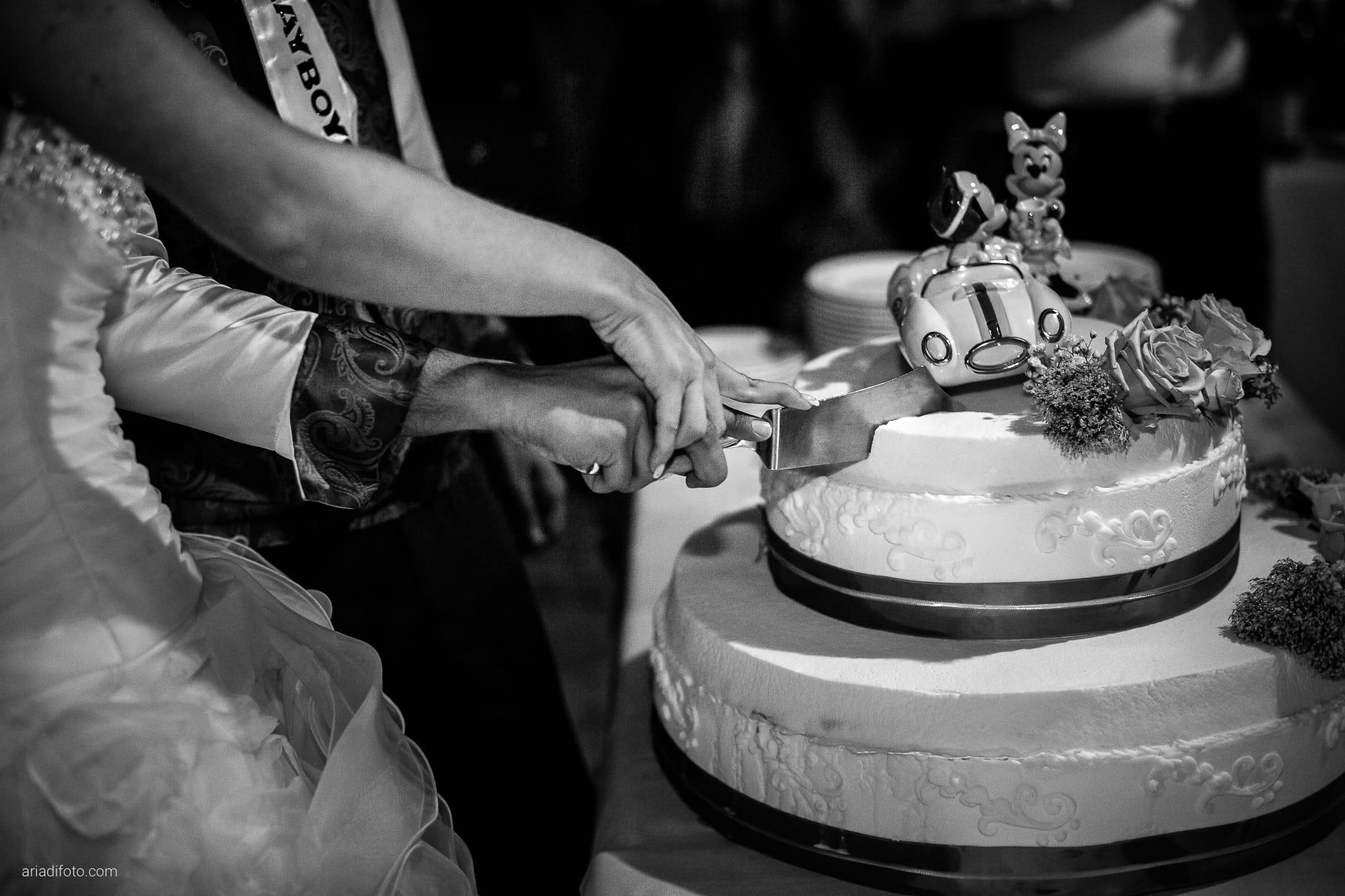 Melania Davide Matrimonio Monrupino Tavernetta Castello di Spessa Capriva Gorizia ricevimento torta