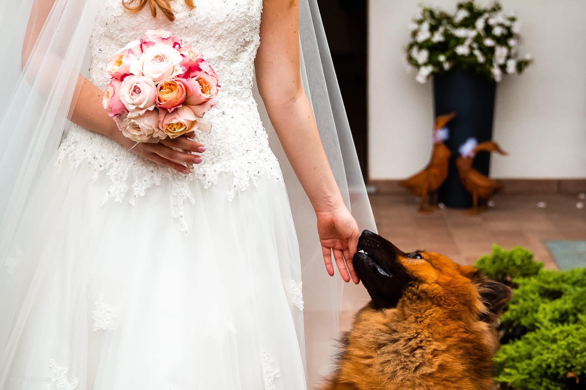 Valentina Francesco Matrimonio Pagnacco Castello Villalta Fagagna Udine preparativi cani