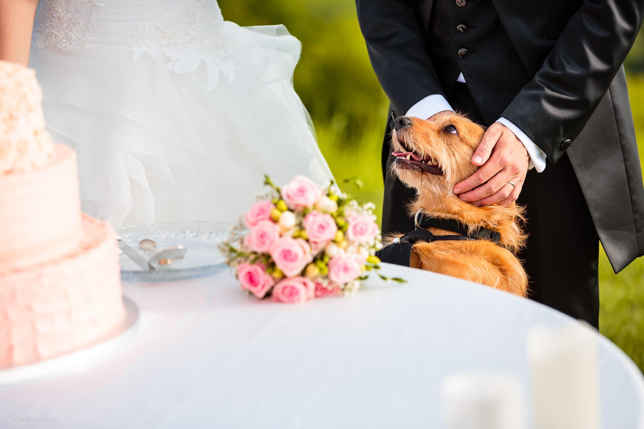 Martina Daniele Matrimonio Duino Baronesse Tacco Collio Gorizia ricevimento torta cani dogs