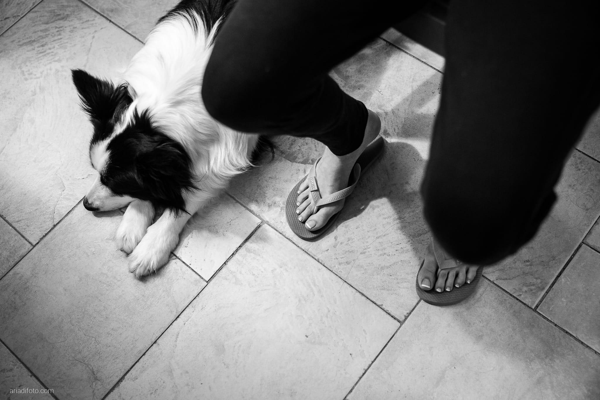 Sarah Matteo Matrimonio Moruzzo Agriturismo Il Vagabondo Buttrio Udine preparativi cani border collie