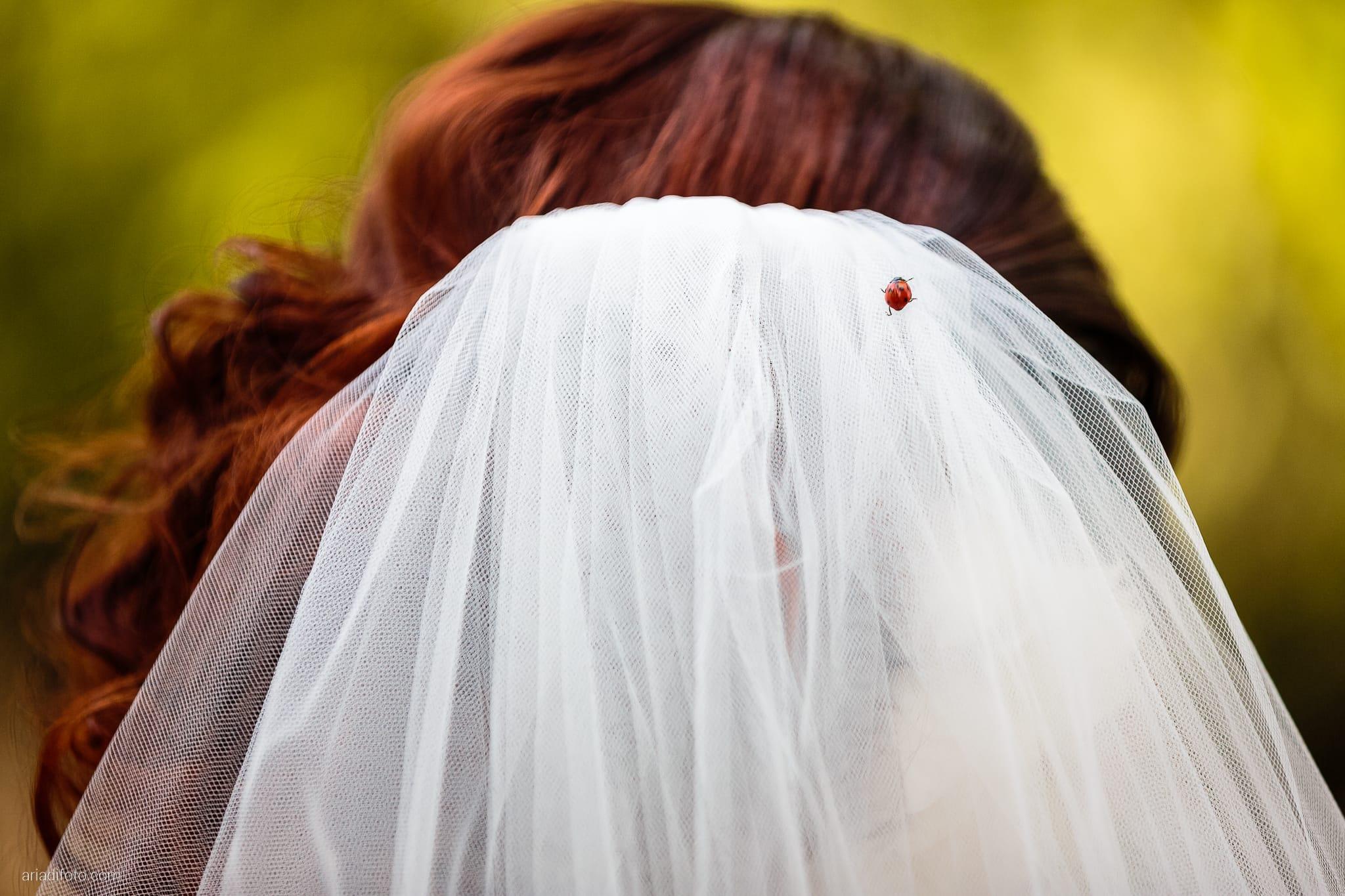 Sofia Mario Matrimonio Baronesse Tacco Collio Gorizia ritratti sposi coccinella velo
