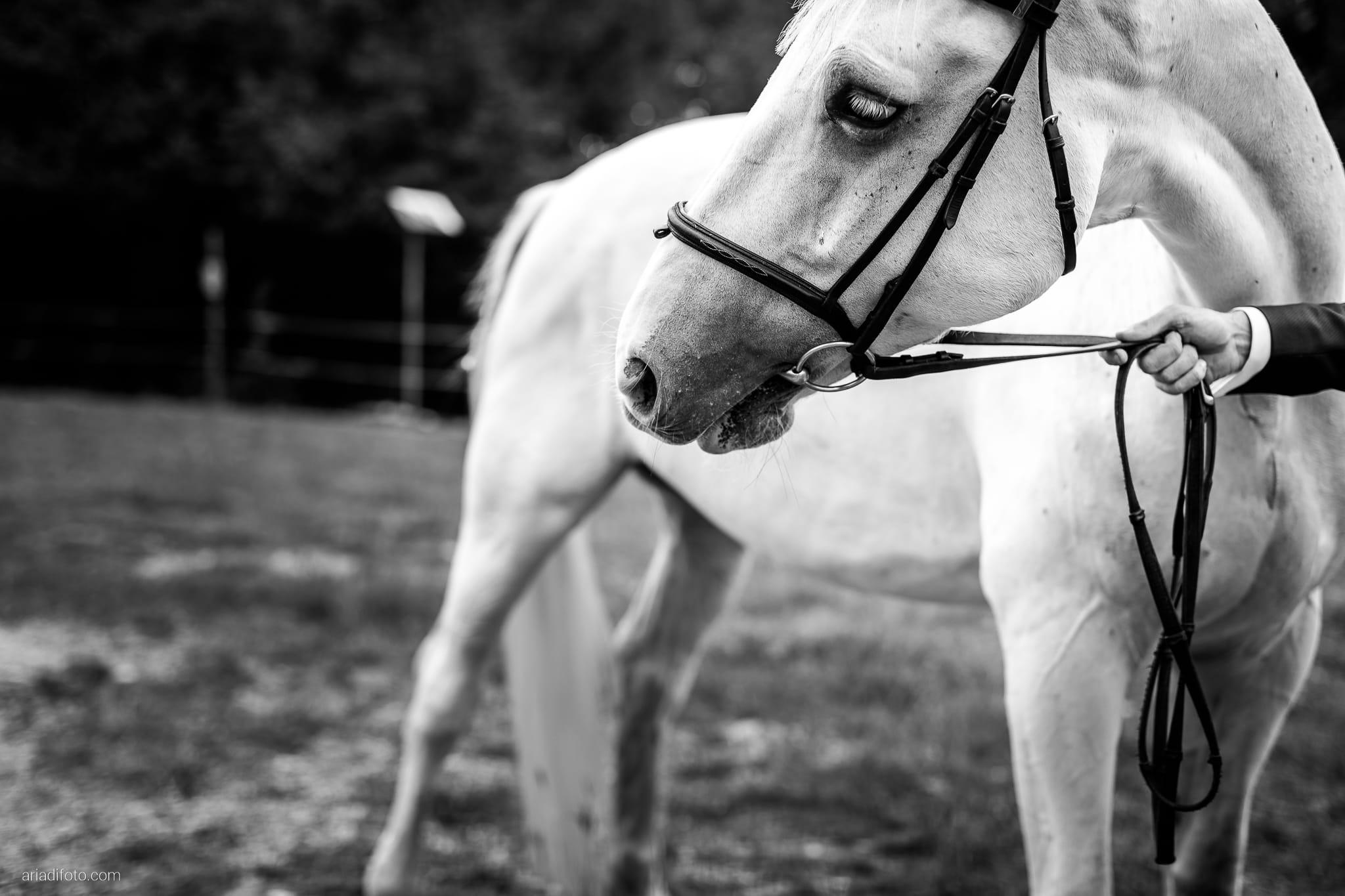 Maria Emanuela Fabio Matrimonio Muggia Porto Vecchio Agriturismo Hermada Duino Trieste ricevimento cavalli